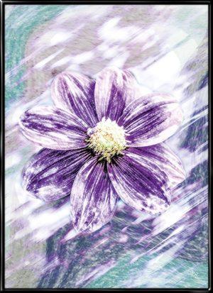 Dreamy Flower, plakat fra Inda Art med lilla blomst i tegnet stil