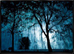 Ghostlands, plakat fra Inda Art. Spøgelsesskoven i blå farver