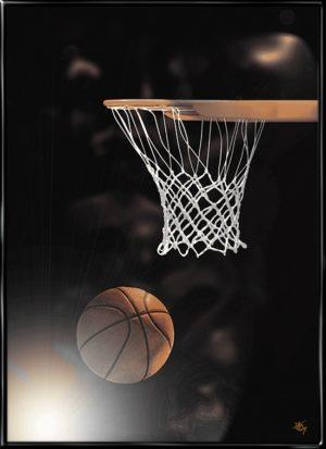 Basketball Artified, plakat fra Inda Art