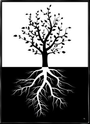 Silhouet billede af et træ med dets rødder, plakaten Stærke rødder har træer i blæst fra Inda Art