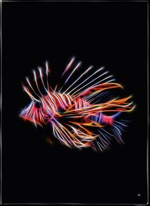 Dragefisken, plakat fra Inda Art