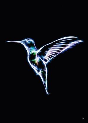 Kolibrien, plakat fra Inda Art