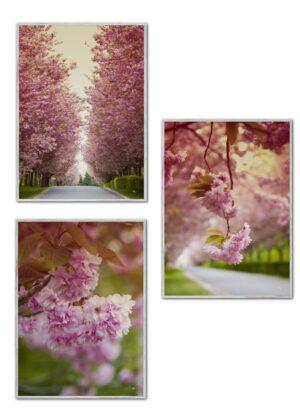 Kirsebærblomsterne (3-pak), plakater fra Inda Art